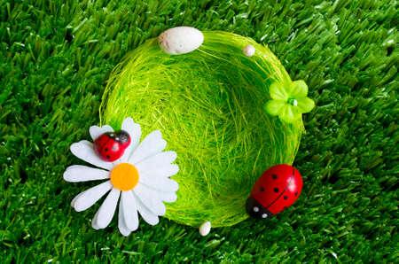grass plot: A summer background with a nest, ladybugs, grass.