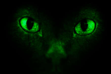 diabolical: Demonic eyes