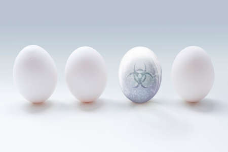An illustration of three white eggs and a glassy transparent egg with water bubbles and biohazard sign on the grey background. Concept illustration, which shows sick and unhealthy egg among others.
