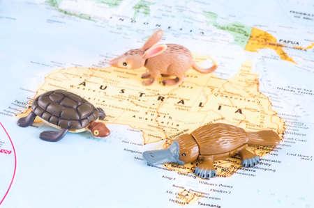 dedo meÑique: Una foto de los animales australianos del juguete en el mapa.