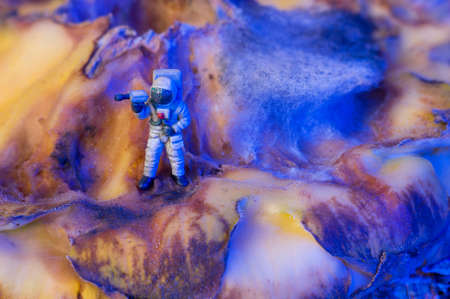 A toy astronaut on an organic surface with fungus, which looks like a surface of another world or a planet with a crater. Selective focus. Stock Photo