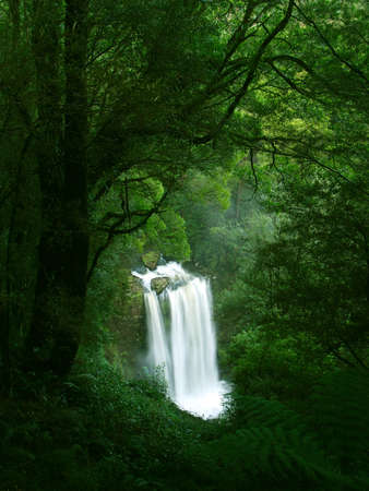 ranges: Waterfall in Rainforest, Victoria, Otway National Park, Australia Stock Photo