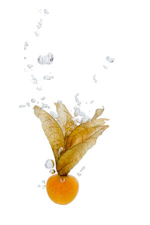 Cape gooseberry falling into water, with air bubbles, in front of white background, union of the three things essential to live which is air, water and nutrition Stock Photo - 13554184