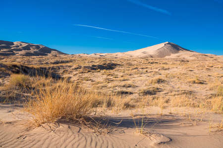 Sand dunes of Kelso in Mojave National Park with blue sky, no clouds, USA