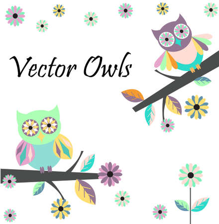 coop: Two cute owls in flowers on a white background. Illustration