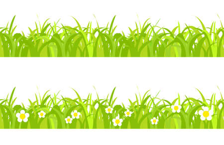 sod: Seamless spring grass on a white background with flowers