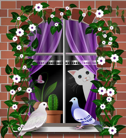 cat and doves on a window background Vector