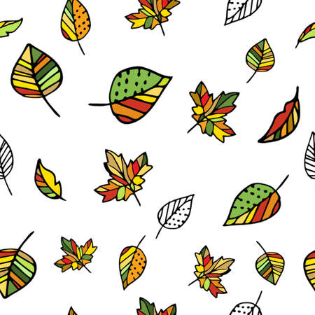 Autumn pattern with leaves hand drawn on white