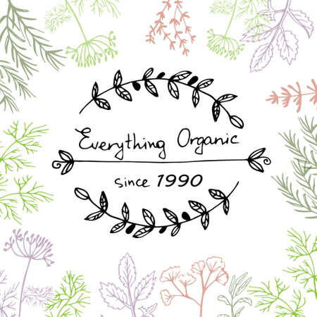 Vector background with hand drawn herbs and spices Organic and fresh spices illustration.  イラスト・ベクター素材