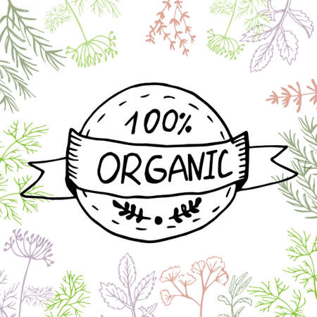 Vector background with hand drawn herbs and spices Organic and fresh spices illustration. Иллюстрация