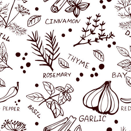 Seamless vintage pattern with ink hand drawn  herbs and plants sketch on white
