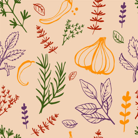 Seamless vintage pattern with ink hand drawn  herbs and plants sketch 版權商用圖片 - 45767828