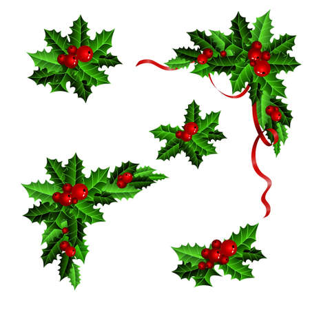 element: Decorative elements with Christmas holly set isolated
