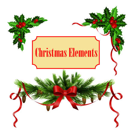 Decorative elements with Christmas holly set isolated