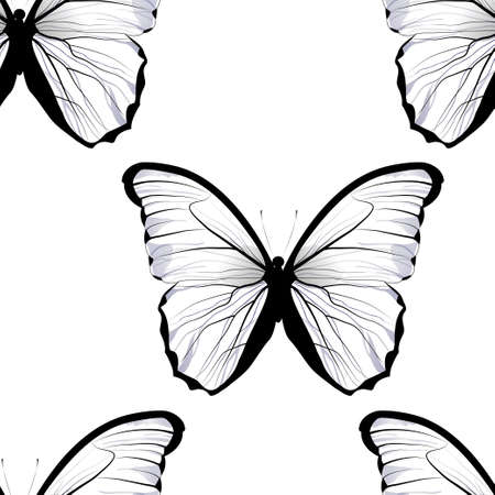 seamless tiling repeating butterfly pattern background with beautiful white butterflies