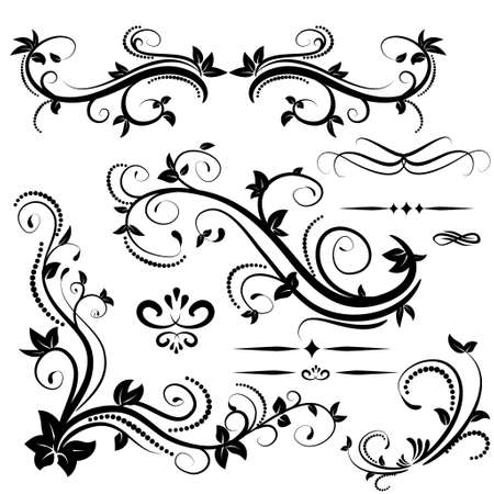 Swirl elements for design Vector illustration on white and text dividers