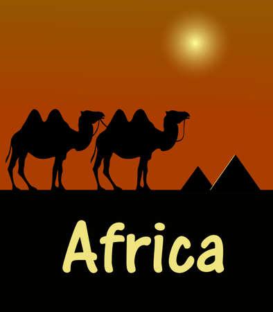 アフリカのエジプトの砂漠でラクダのシルエット 写真素材 - 53262708
