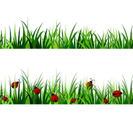 grass close up: Green Grass seamless set isolated clip art vector on white