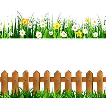 chamomile flower: Green Grass seamless set isolated clip art vector on white