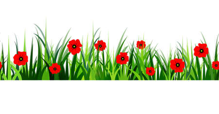 grass close up: Green Grass seamless poppy isolated clip art on white Illustration