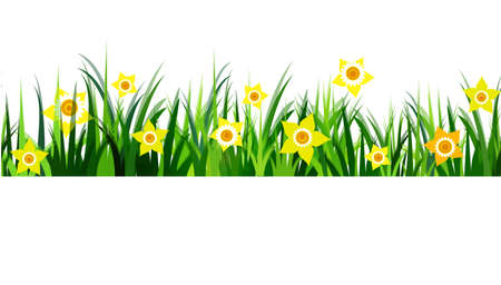 326 Daffodil Field Stock Illustrations, Cliparts And Royalty Free ...