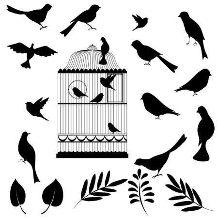 animal silhouette: Vector illustration, of bird cage with birds and floral elements for your design Illustration