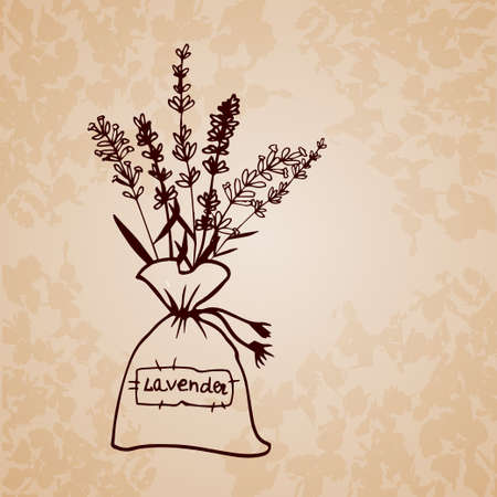 sachet: Lavender sachet sketch bouquet Hand-drawn cartoon flower icon drawing Vector illustration.