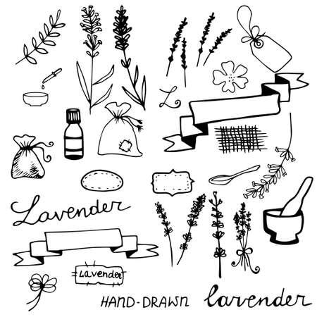Hand drawn lavander set monochrome on light background