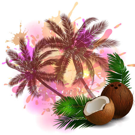 Coconut tropical nut fruit with cut vector illustration on abstract background with palms Ilustração