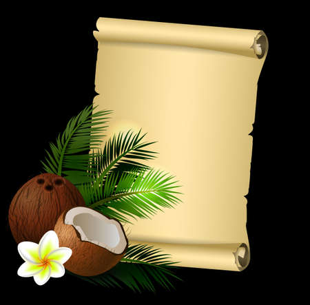 plumeria flower: Coconut tropical nut fruit with cut vector illustration isolated with old grange paper roll on black with plumeria flower