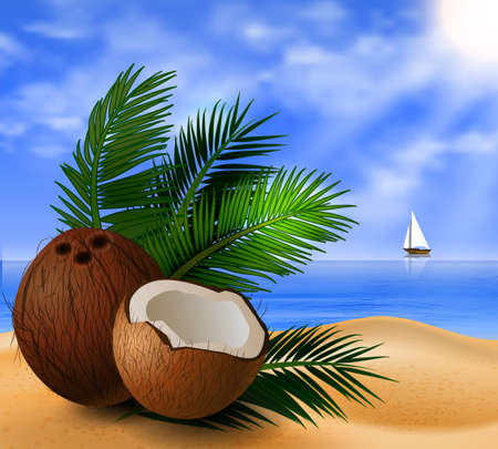 cuted: Coconut tropical nut fruit with cut vector illustration on a beach  background with tropical palm leaves and a boat