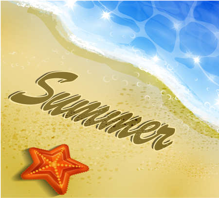 Mooie strand hoogste mening met zeesterren vectorillustratie