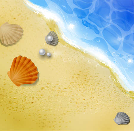 beach top view with starfishes and seashell illustration