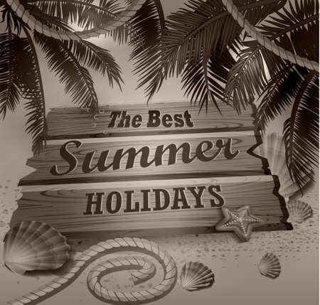 Beautiful beach top view with starfish palm leaves rope and wooden board vector illustration in monochrome
