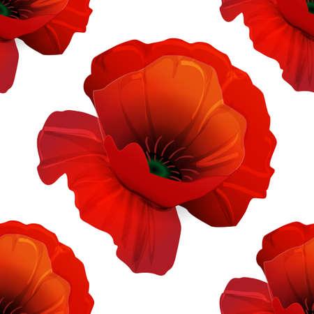 Poppy seamless pattern on white background red 向量圖像
