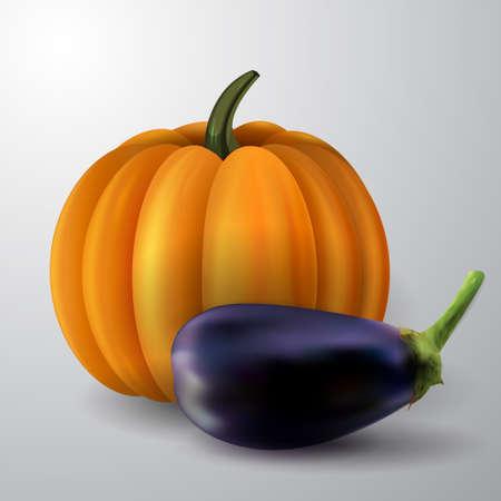 oranje pompoen en aubergine op een witte achtergrond vector illustratie