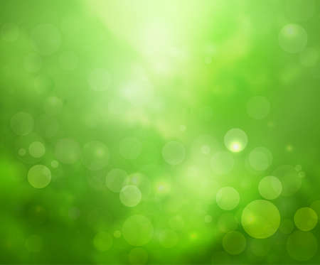 rain forest: Green lights background fantasy bokeh rain forest style