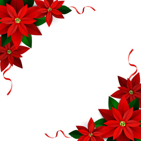 Christmas decoration on white Poinsettia with ribbons Vector