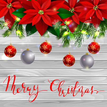 Christmas decoration and greeting card with evergreen trees with poinsettia christmas balls isolated on wooden wall with lights and handwritten Merry Christmas Illustration