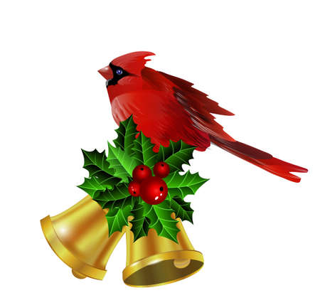 Christmas corner decoration with evergreen holly and poinsettia and golden bells isolated and cardinal bird