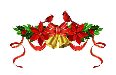 Christmas decoration with evergreen treess holly and pinecone and poinsettia and ribbon isolated with bells and cardinal birds