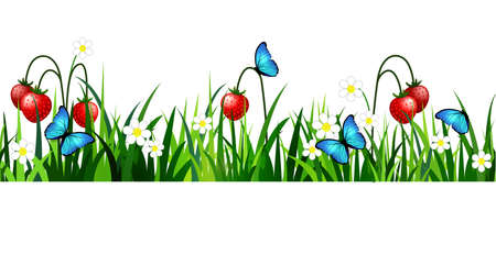 Green grass with flowers and strawberries in white backdrop. Иллюстрация