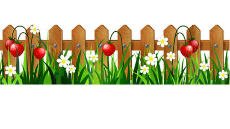 Green grass with flowers and strawberries. Иллюстрация