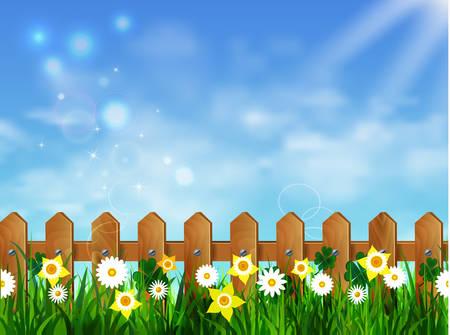 Pelouse herbe verte avec le lever du soleil sur le ciel bleu Banque d'images - 78716101