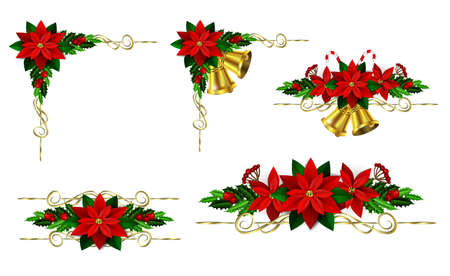 Christmas decoration set with evergreen trees, holly and poinsettia