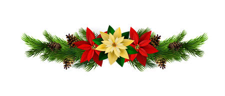 Christmas decoration with evergreen treess pine cones and poinsettia isolated vector
