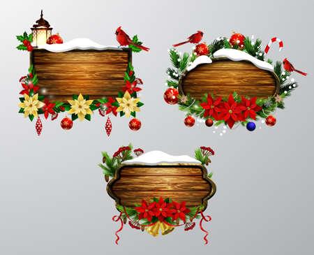 snow cardinal: Christmas design concept. Illustration