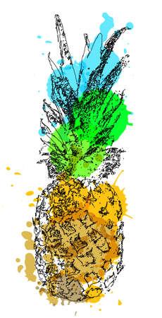 Vector single sketch pineapple illustration on white background.