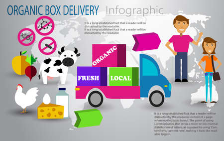 Organic food box delivery infographic concept Vector