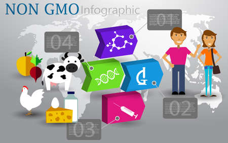 Not chemical GMO hormone food infographic concept vector illustration.